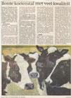 Koeienstal